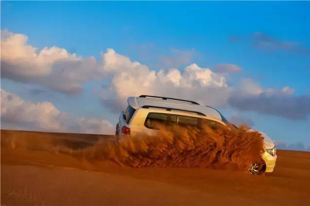 微信骆驼沙漠风景